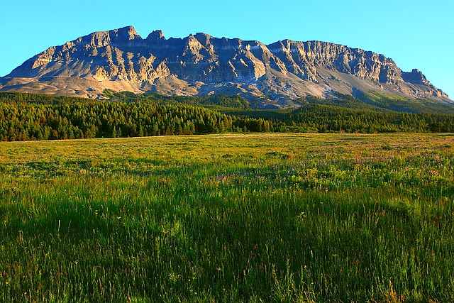 IMG_0958 Singleshot Mountain