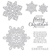 Flurry of Wishes Photopolymer Stempel-Set von Stampin 'Up!