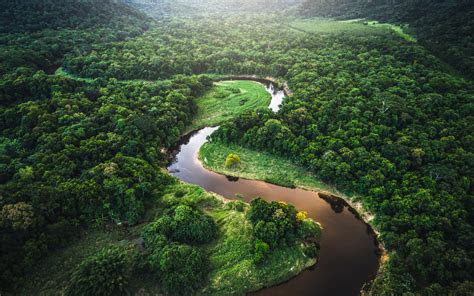 amazon rainforest  page    wallpaperwiki