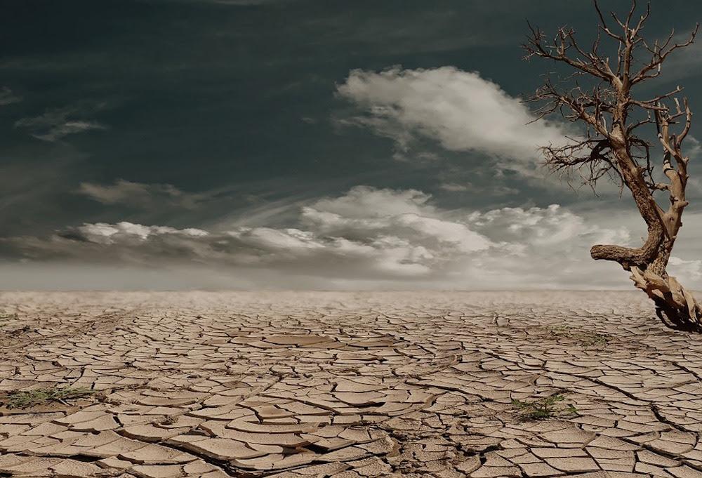 Risultati immagini per La siccità che ci aspetta.