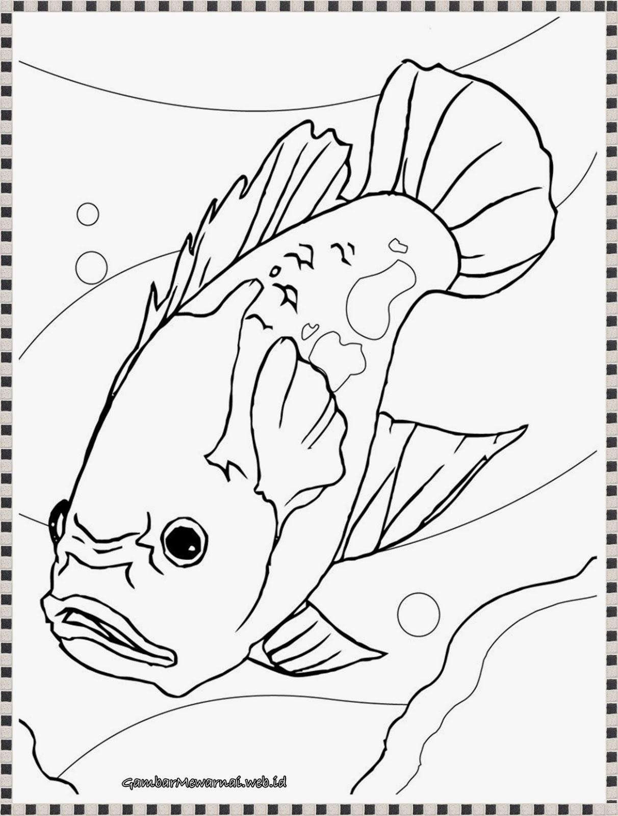 Aquarium Drawing For Kids At Getdrawings Com Free For Personal Use
