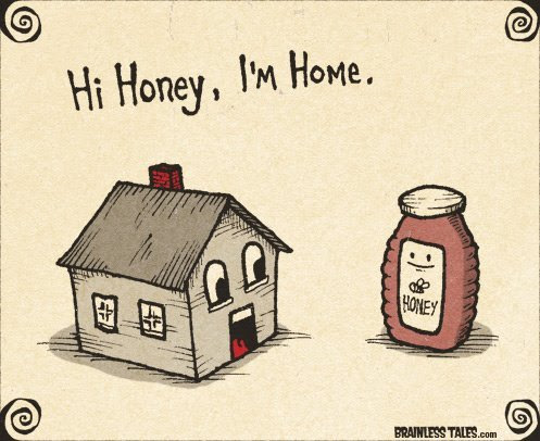 cute, funny, home, honey, lol