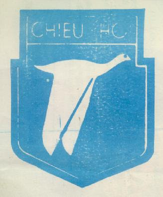 BlueChieuHoi.jpg (17927 bytes)