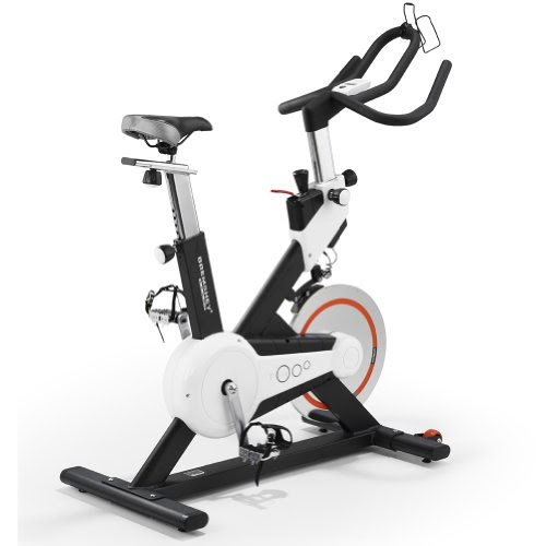 Proform 350 Spx Exercise Bike Pfex02914: Exercise Bikes Reviews: Bremshey BS7 Upright Exercise Bike