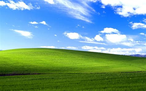 windows xp operating system simulator
