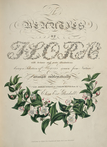 Floral typography titlepage 1834