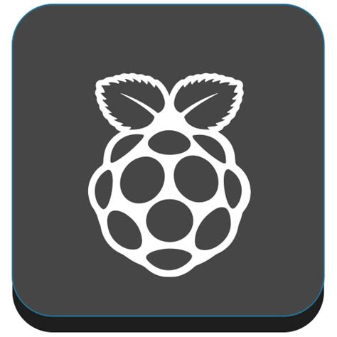 device food pi raspberry berry raspberry pi icon