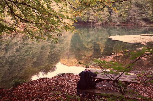 thoughtful mood of fall