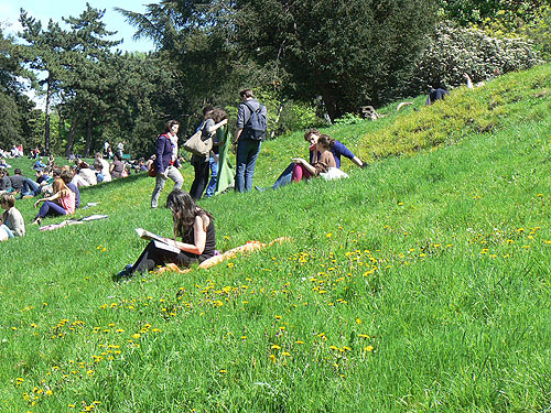 buttes chaumont herbe.jpg