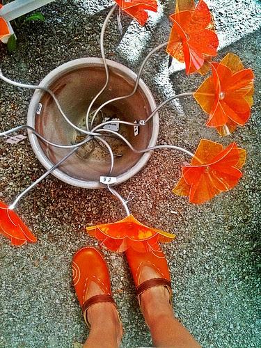 shoe per diem june 18, 2011 - orange