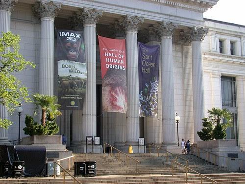 Smithsonian palms