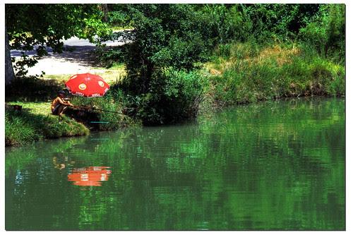 dia de pesca un día de verano junto al río Tajo