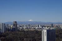 赤プリ富士山