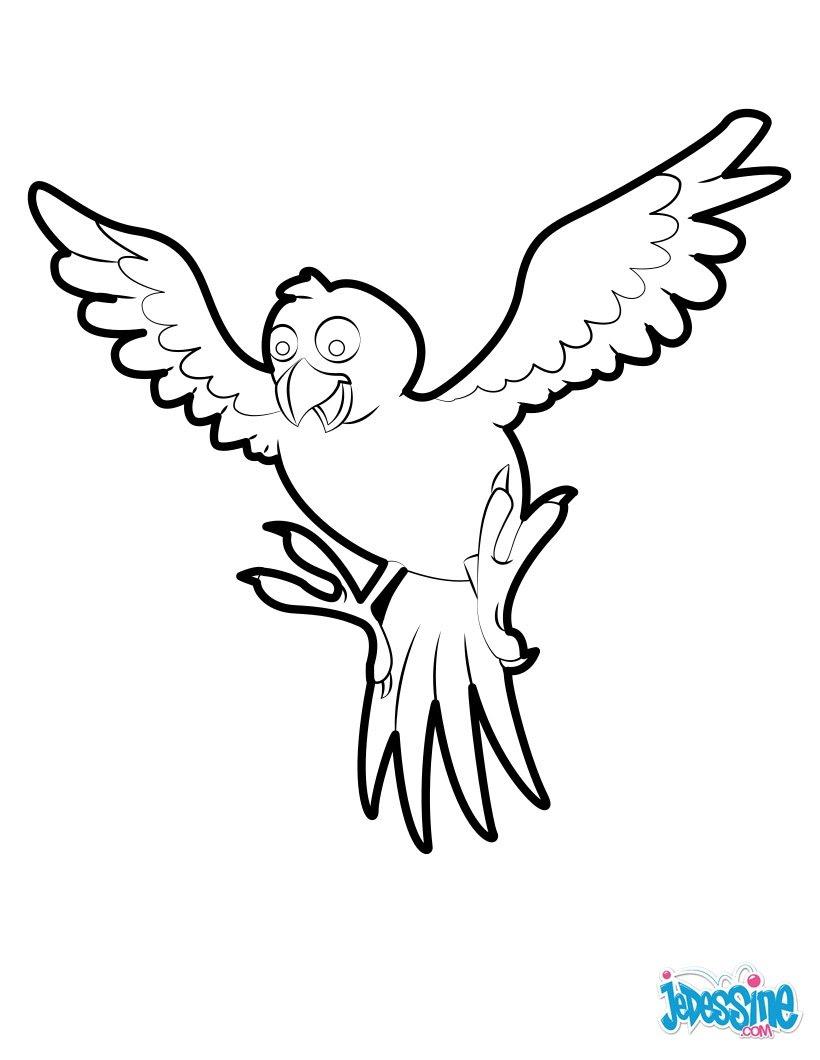 Le vol du Pigeon de la Paix Oiseau