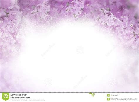 Purple Flower Bougainvillea Frame On Soft Pink Background