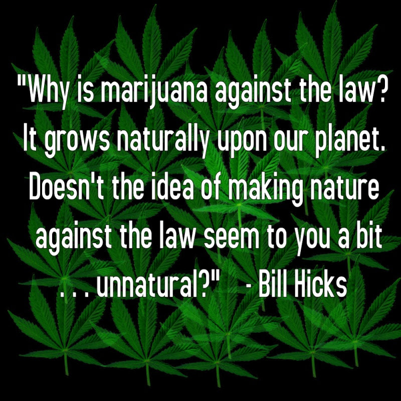 Funny Stoner Quotes Sayings Funny Stoner Picture Quotes