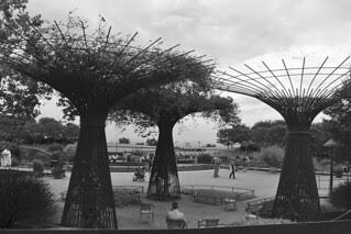 Los Angeles - Getty Center garden