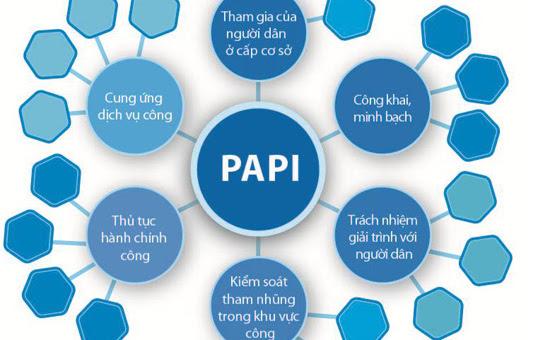 PAPI, CPI, cải cách hành chính, chính quyền địa phương, nghị trường, chủ tịch tỉnh, HĐND