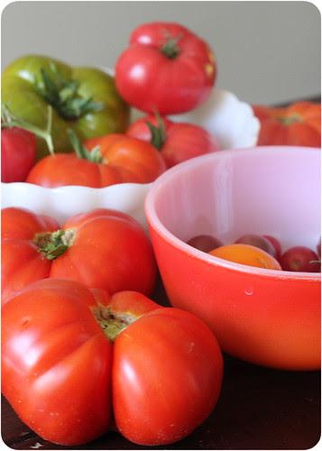 tomatoes - web.jpg