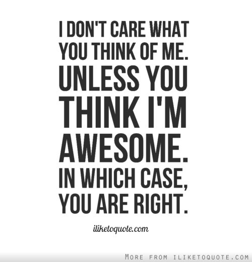I Dont Care What You Think Of Me Unless You Think Im Awesome In
