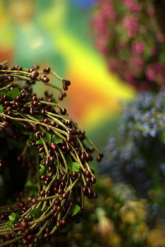 Wreaths (by RecycledAiir)