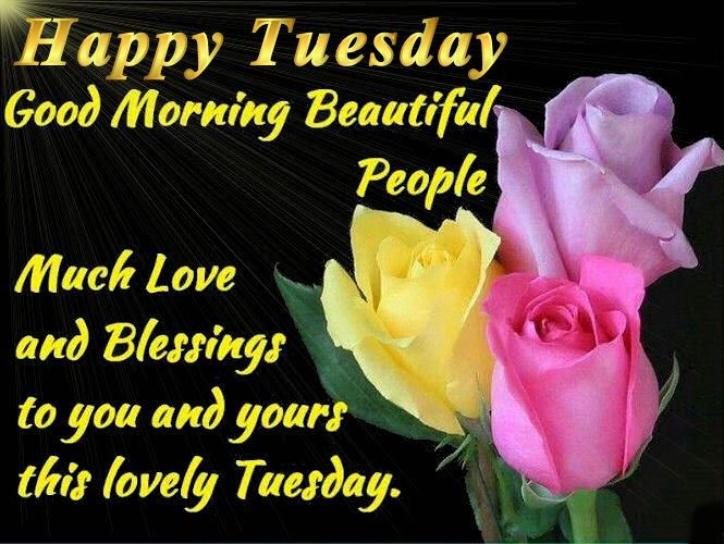 Good Morning Happy Tuesday Quotes Pictures Photos And Images For