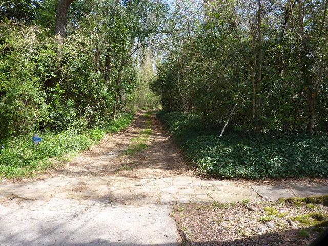 P1180459-2013-04-02-RidgeC-627-Gravel-Driveway
