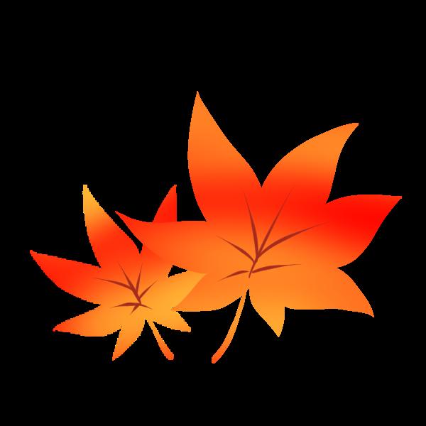 紅葉のイラスト かわいいフリー素材が無料のイラストレイン