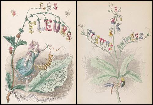 Les Fleurs Animées - titlepages Vol. 1 + 2
