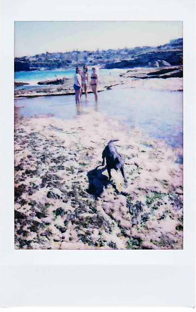 Sculpture by The Sea - INSTAX 6