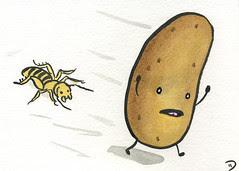 Potato Bugged
