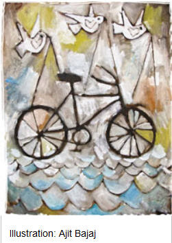 india bicycle doves