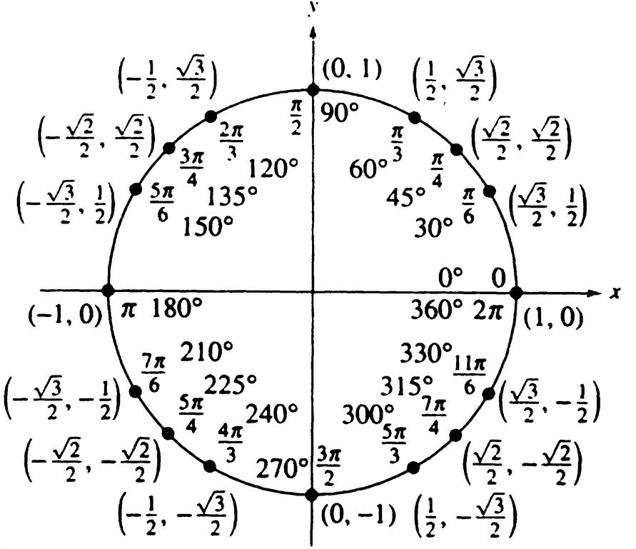 Unit Circle - aleigha