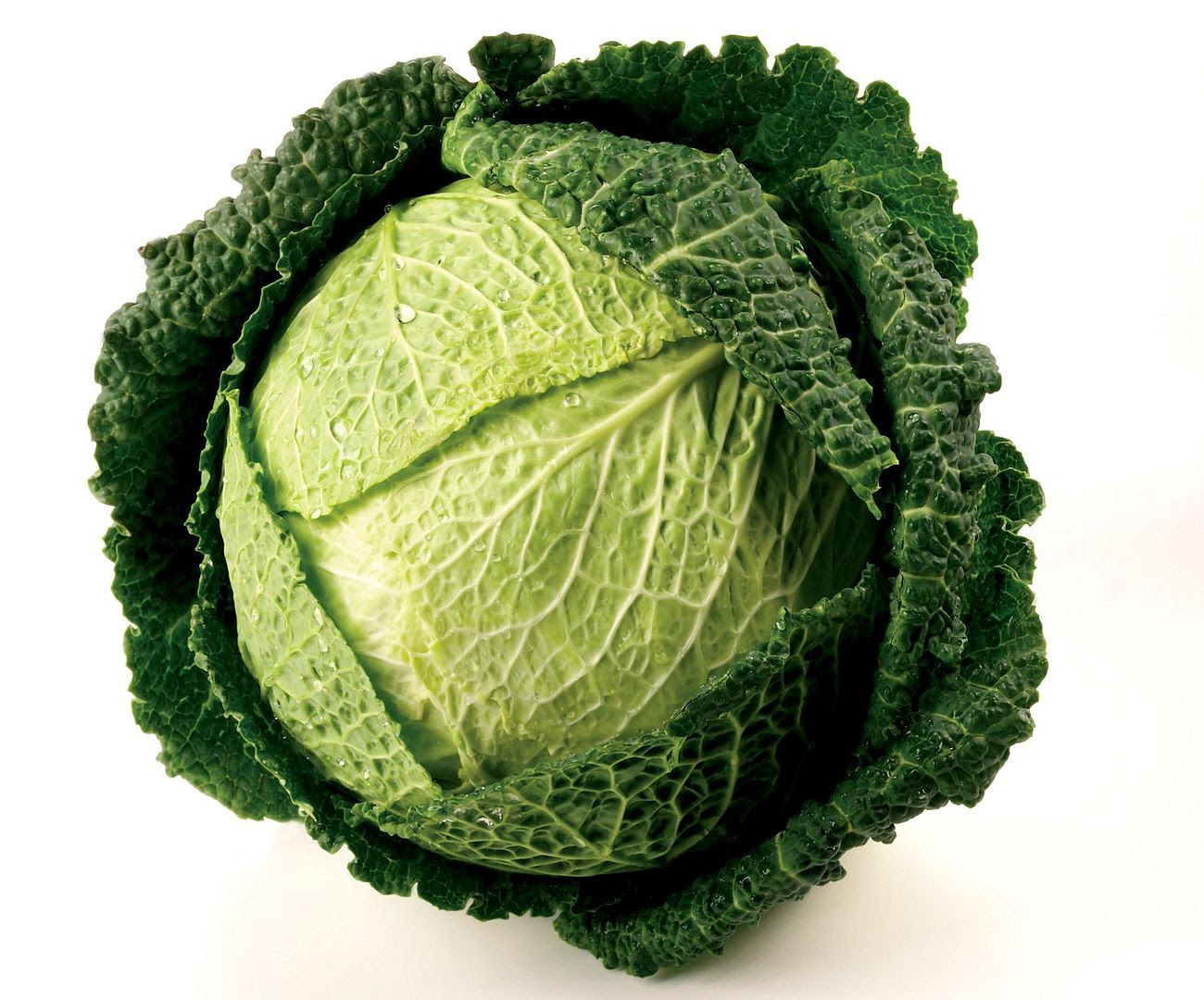 photo image_riviera_savoy_cabbage_zpswlgs9r89.jpg