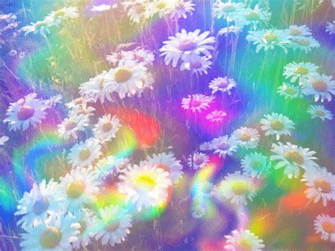 gifs hermosos hermosas flores encontradas en la web