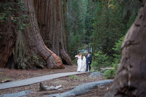 sequoia national park wedding   Bergreen Photography
