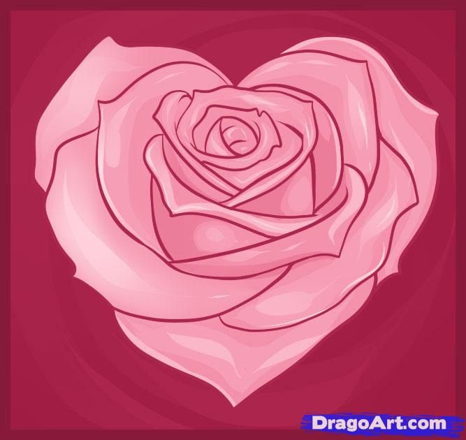 Heart With Rose Drawing At Getdrawingscom Free For Personal Use