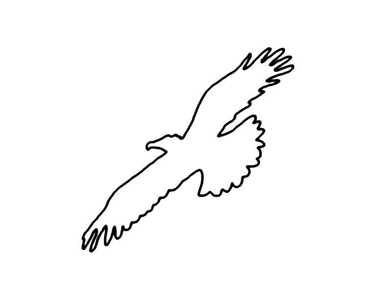 Ausmalbilder Adler Und Schlange Adler Malvorlagen Ausmalbilder Einhorn