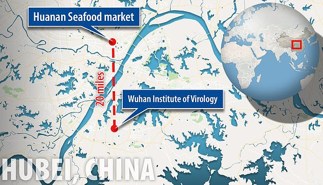 The Wuhan National Biosafety Laboratory is located about 20 miles away from the Huanan Seafood Market