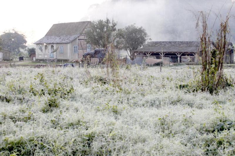 Localidade de Jaraguazinho, Jaraguá do Sul/SC, geada deixou campos cobertos:imagem 9