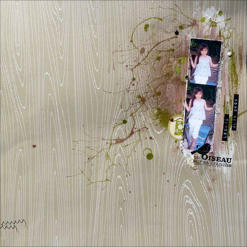 2009-06-02 oiseau-sur-la-branche