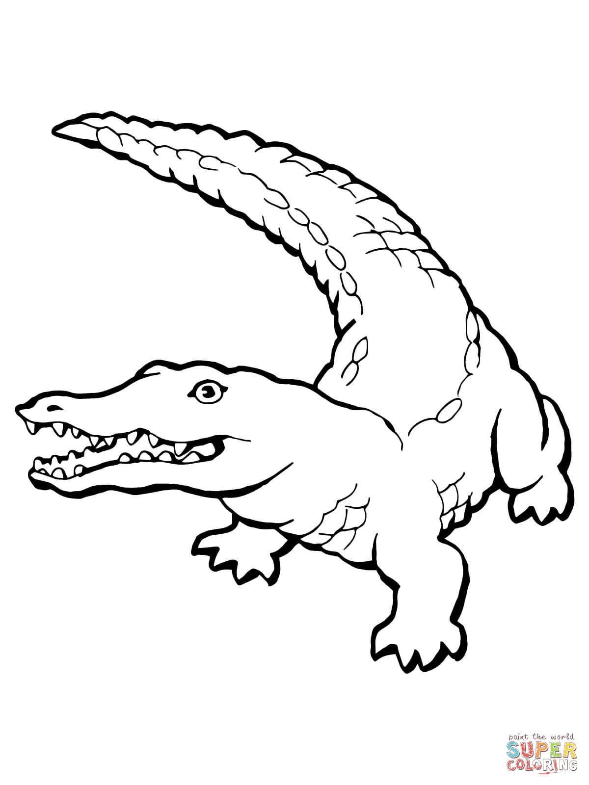 20 Krokodil Zum Ausmalen - Besten Bilder von ausmalbilder
