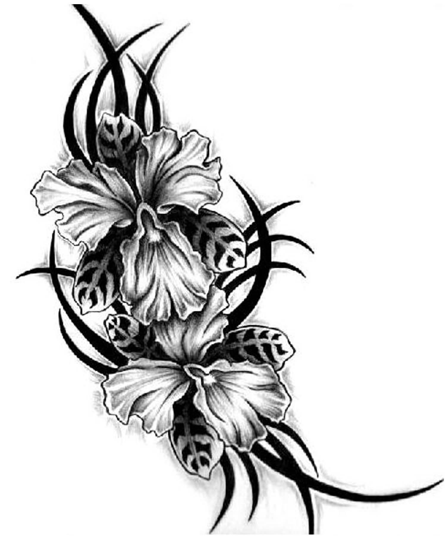 Hibiscus Flower Clipart Black And White Flowers Healthy