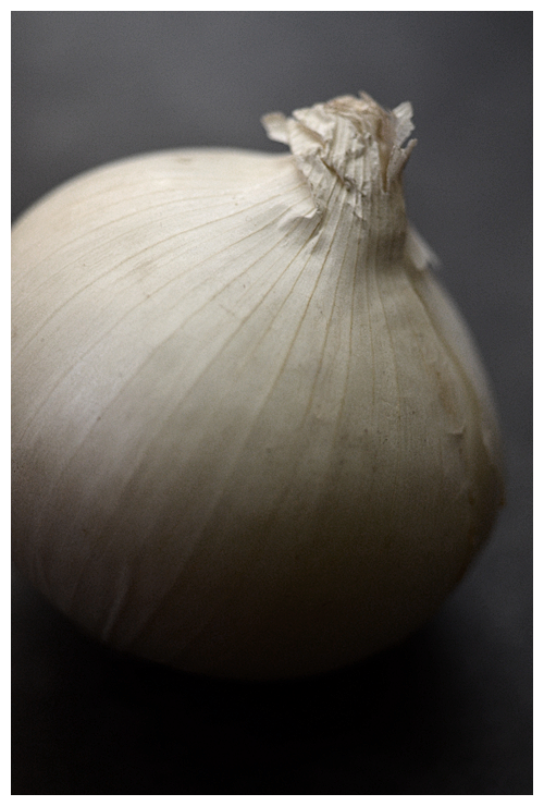 white onion© by Haalo