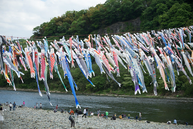 泳げ鯉のぼり相模川/相模原