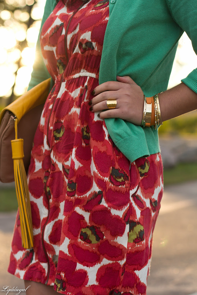 poppies-3.jpg