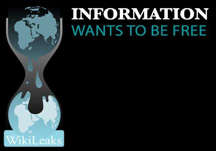 Support WikiLeaks