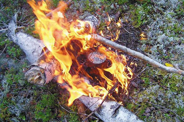 Как разжечь костер, как быстро разжечь костер, как разжечь костер без спичек, типы костров, как развести костер, как правильно разжечь костер, растопка для костра, как разжечь костер в дождь, топливо для костра, место для костра, из чего разжечь костер