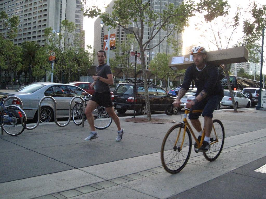 gazelle and bicycle