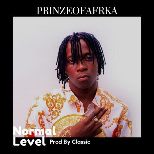 "[MUSIC] Prinzeofafrika – ""Normal Level"""